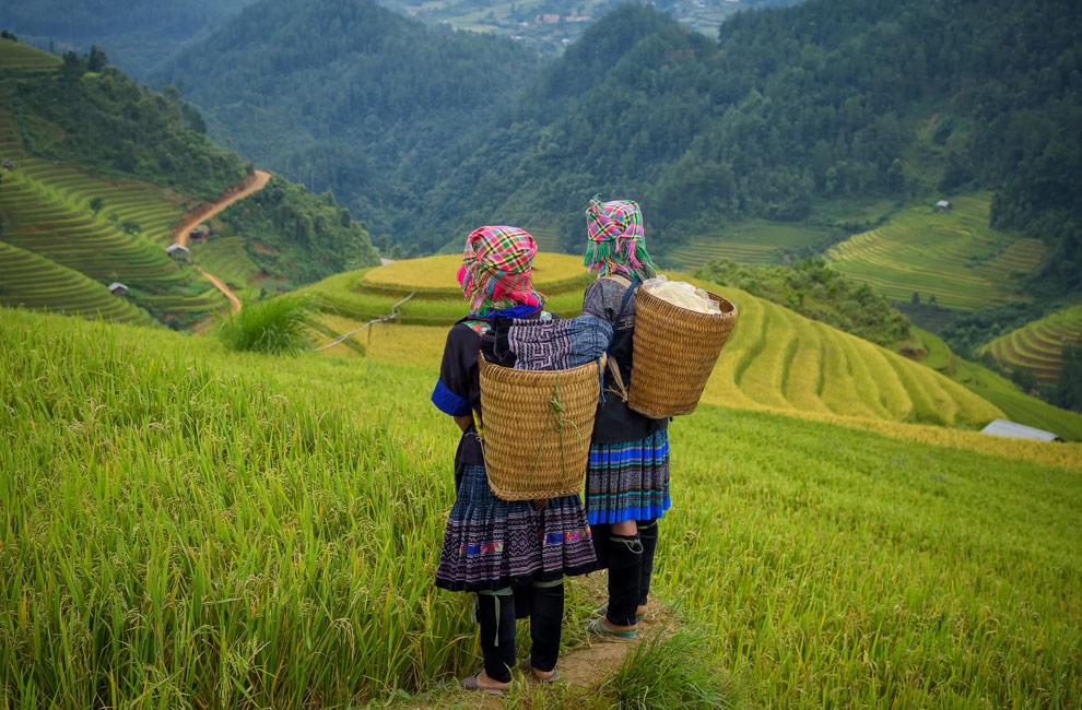 Vietnam, una mezcla entre modernidad y tradición