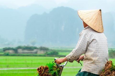 Auténtico Vietnam con Mai Chau y Ninh Binh en privado