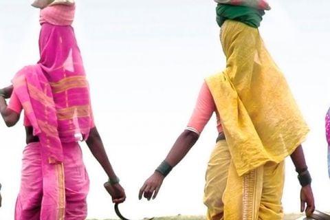 Encantos de India y Sri Lanka _ verano