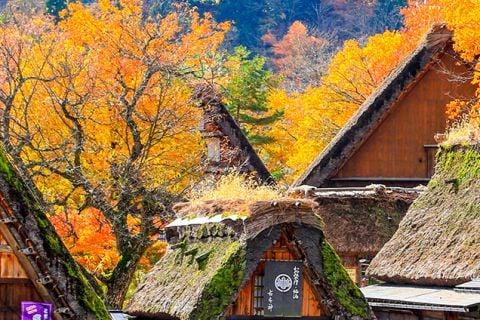 Japón con camino del Kumano
