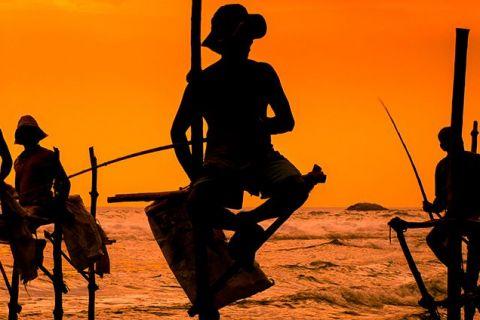 Kerala y maravillas de Sri Lanka en verano