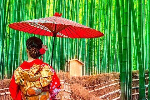 Japón a tu ritmo con visitas esenciales
