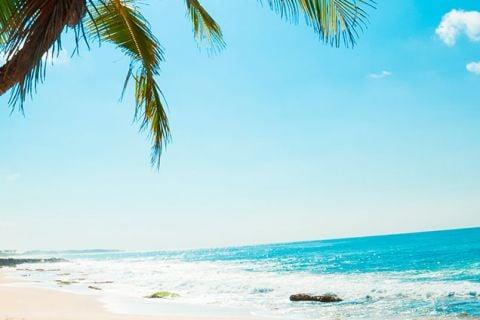 Maravillas de Sri Lanka y playas del sur_invierno 2019/20