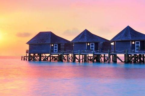 Maravillas de Sri Lanka y Maldivas en invierno_invierno 2019/20