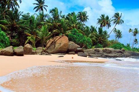 Sri Lanka Clásica y sus playas