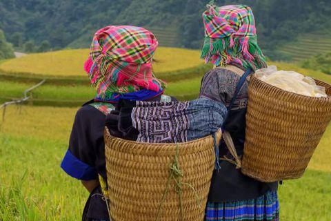 Tribus de Vietnam y Camboya _ ARG
